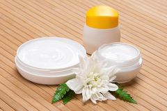 Natural moisturizing face and body cream Stock Photography