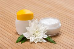 Natural moisturizing face cream Stock Photography