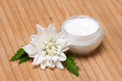 Natural moisturizing face cream Royalty Free Stock Image