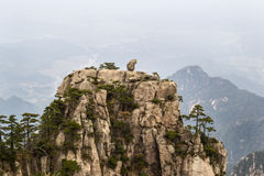 Natural Monkey Stone Statue in Yellow Mountains royalty free stock image