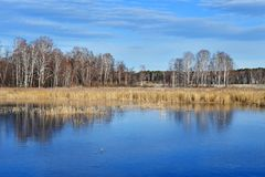 Natural monument - lake Uvildy in late autumn in clear weather, Chelyabinsk region. Russia. Natural monument - lake Uvildy in late autumn in clear weather stock images