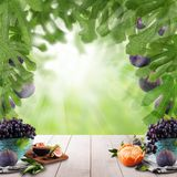 Natural morning background. Sweet Fruit on wooden table in green fig tree sunlight garden.  stock image