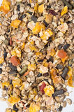 Natural  muesli  background with fruites. for horse. Stock Images