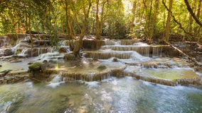 Natural multiple layers deep Forrest stream waterfall. Natural landscape background Stock Photos