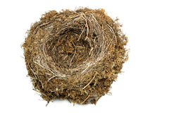 Natural Nest royalty free stock photography