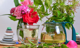 Natural nettle tea. Herbal tea; natural nettle tea Stock Photos