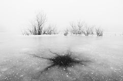 Natural neuron ice pattern on frozen lake. Winter landscape. Trees trapped in ice Stock Images