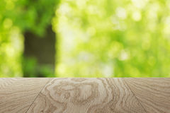Natural oak table template with blurred oak tree on background Royalty Free Stock Image
