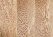 Natural oak wood surface hight detailed Stock Image