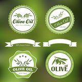 Natural olive oil labels Stock Image