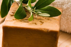 Natural Olive Soap With Fresh Branch stock photos