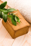 Natural Olive Soap With Fresh Branch Royalty Free Stock Photo