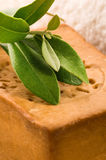 Natural Olive Soap With Fresh Branch Stock Photography