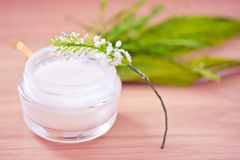 Natural organic beauty lotion/moisturizer Stock Photos