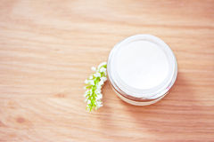 Natural organic beauty lotion/moisturizer. Natural spa beauty product, organic cosmetics Stock Images