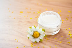 Natural organic beauty lotion/moisturizer Stock Photography