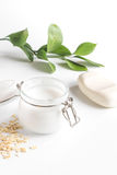 Natural organic cosmetics with herbs for baby on white background royalty free stock photos