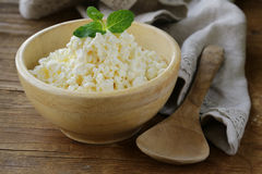Natural organic cottage cheese. For healthy breakfast Royalty Free Stock Photography