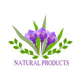 Natural, organic food, bio, eco labels and shapes on white background. Hand drawn leaves , crocus. Royalty Free Stock Images
