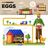 Natural Organic Foods to Supermarket. Vector. Eggs of own production with fast delivery to the supermarket. Vector Infographics Stock Photos