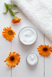 Natural organic herbal cosmetic cream with calendula flowers stock photography