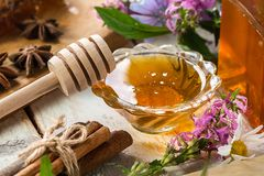 Natural organic honey  on rustic  table. Stock Photos
