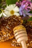 Natural organic honey  on a wooden table Stock Photography
