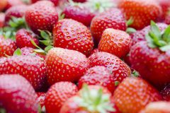 Fresh, delicious, juicy - taste of the summer. Stock Photography