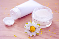 Natural organic moisturizer with daisy. Natural spa beauty product, organic cosmetics Royalty Free Stock Photography
