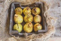 9 Natural organic pears Stock Photos