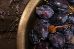 Natural organic plums in copper basin. Rustic style. Natural organic plums in copper basin. Rustic country style royalty free stock image