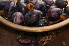 Natural organic plums in copper basin. Rustic style. Natural organic plums in copper basin. Rustic country style stock photography