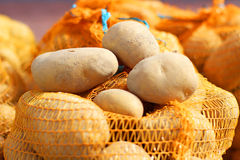 Natural Organic Potatoes in Bulk at Farmer Market Royalty Free Stock Images
