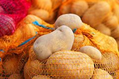 Natural Organic Potatoes in Bulk at Farmer Market Stock Photos