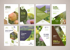 Natural and organic products brochure cover design and flyer layout templates collection Stock Photos