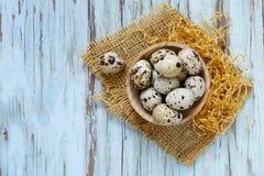 Natural organic quail eggs Royalty Free Stock Image