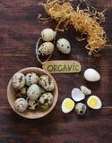 Natural organic quail eggs Royalty Free Stock Images