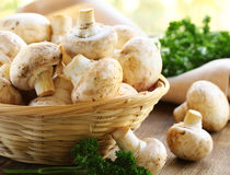 Natural organic raw mushrooms champignons Stock Images
