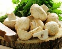 Natural organic raw mushrooms champignons Stock Photography