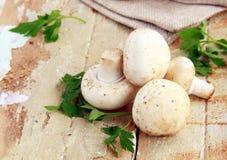 Natural organic raw mushrooms champignons Royalty Free Stock Photography