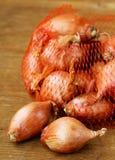 Natural organic red shallot onion Royalty Free Stock Photo