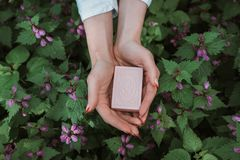 Natural organic soap in the hands of a girl royalty free stock photo