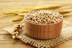 Natural organic wheat. Stock Photos