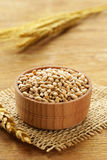 Natural organic wheat. Royalty Free Stock Photo