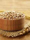Natural organic wheat. Royalty Free Stock Image