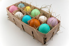 Natural pack of ten colored eggs isolated on white Royalty Free Stock Images