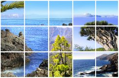 Natural Parc of La Palma Stock Images