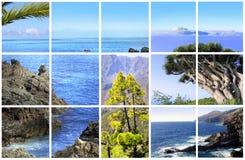 Natural Parc of La Palma stock images