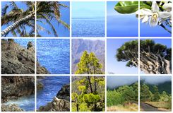 Natural Parc of La Palma Stock Photography