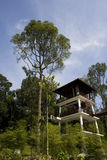Natural Park. A tower in a natural park locate in Malaysia Royalty Free Stock Photo